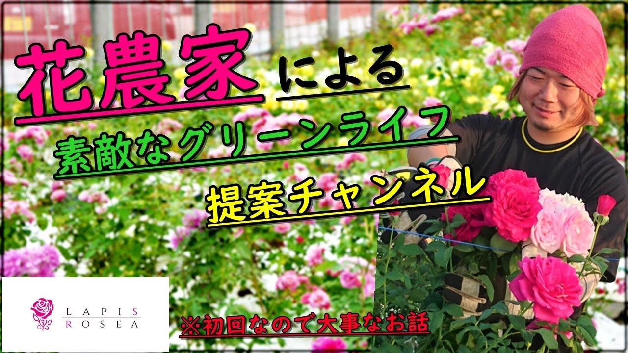 花農家ラピロゼ